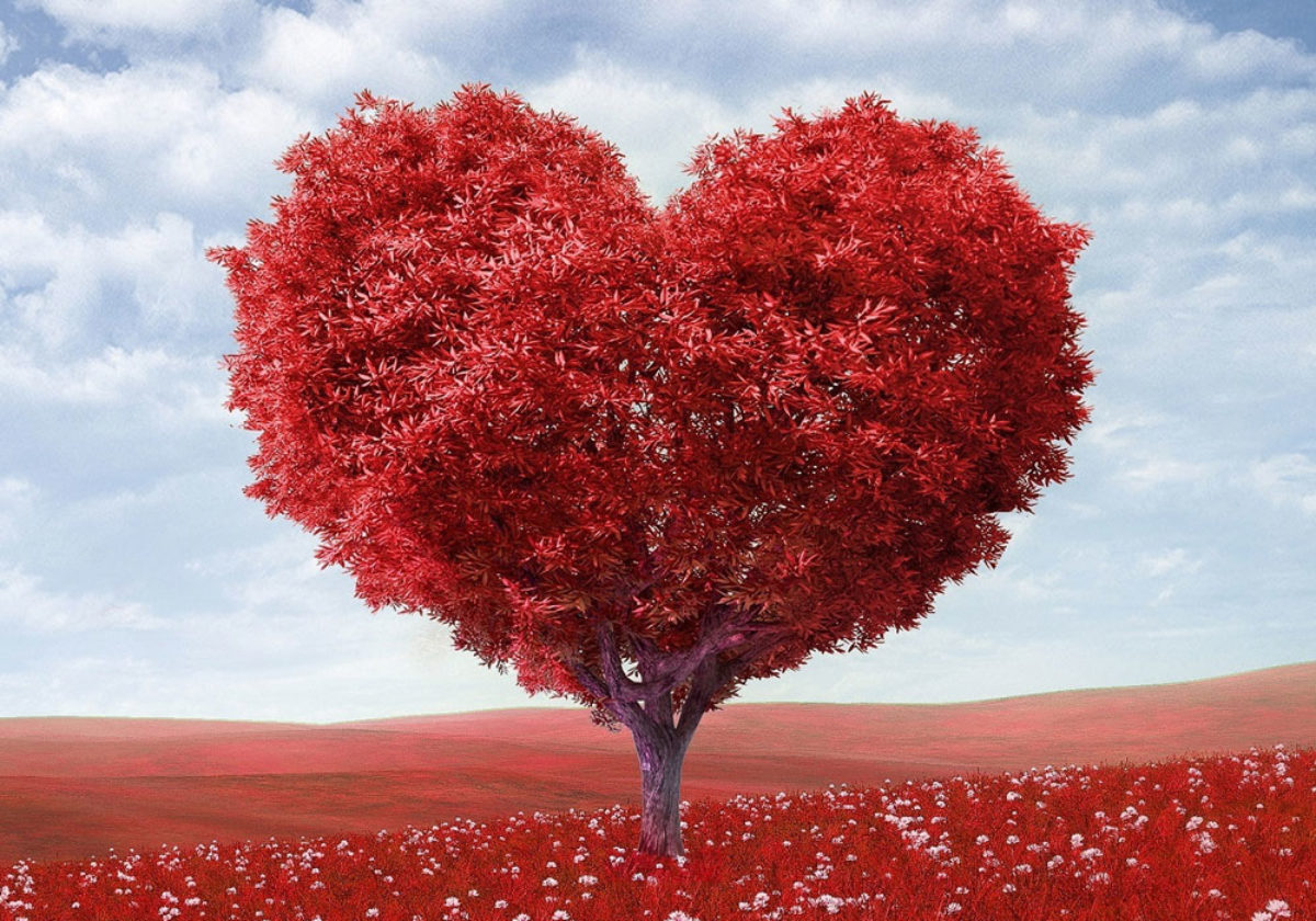 Frasi Amore Inglese Famose.Le 100 Piu Belle Frasi Sull Amore In Inglese Con Traduzione Frasi Mania