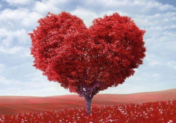Frasi sull'Amore in Inglese