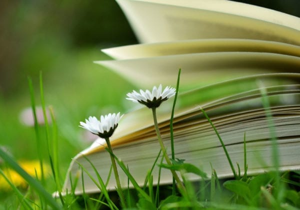 Le 100 frasi in Inglese più Belle e Famose di sempre (con traduzione)
