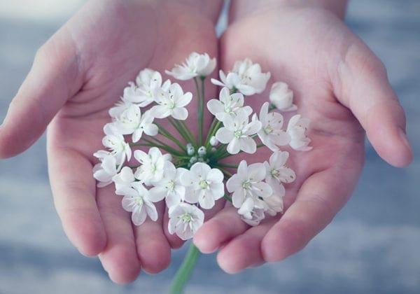 Le 50 frasi di Osho sulla Vita che ti renderanno una persona migliore