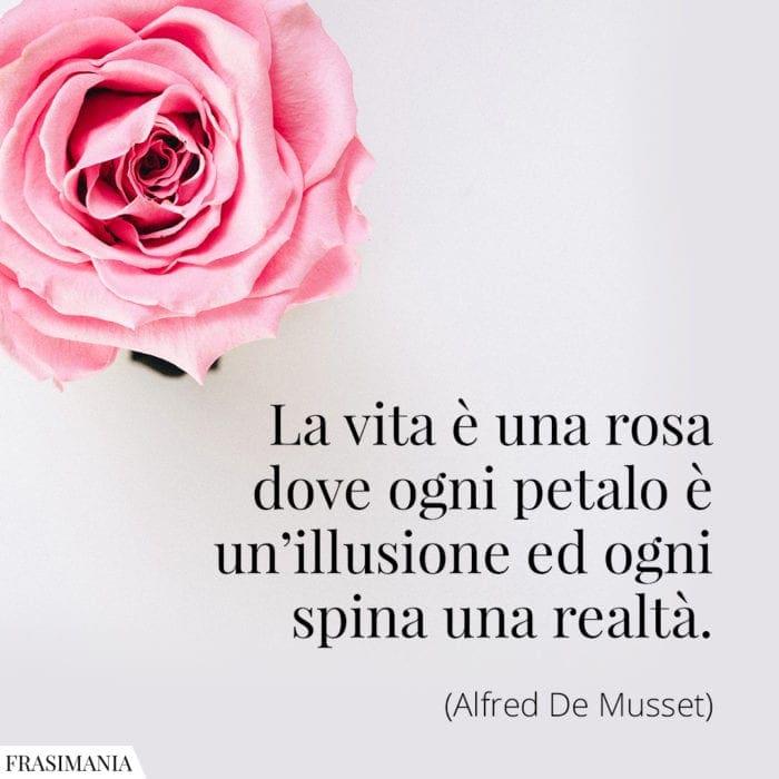 Frasi vita rosa ilusione realtà Musset