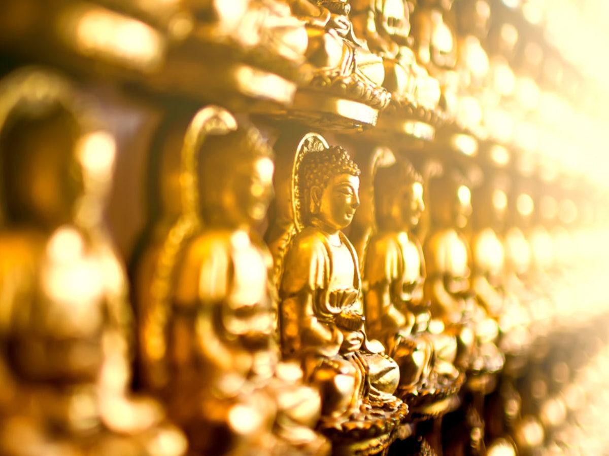 Le 25 Piu Belle Frasi Di Buddha Sulla Vita