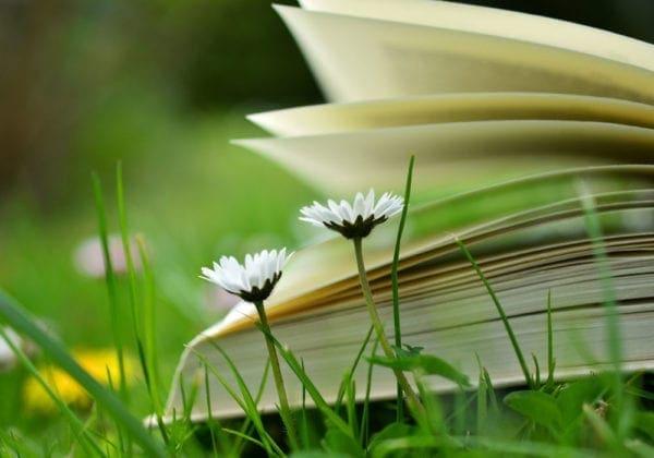 Le 20 frasi più belle di Paulo Coelho sulla vita