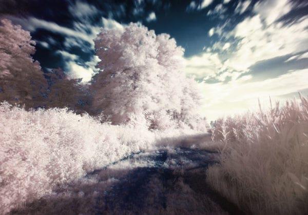 Immagini con frasi sui sogni: le 50 più belle di sempre
