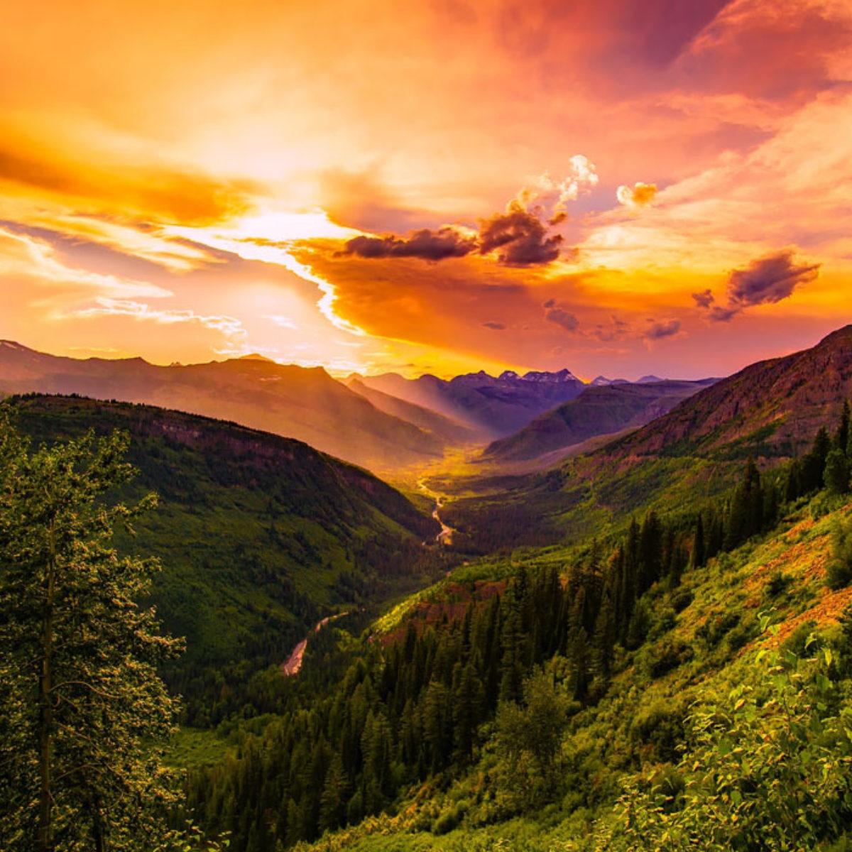 Le 35 Più Belle Frasi Sulla Natura In Inglese E Italiano