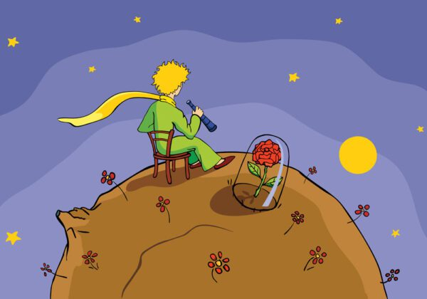Frasi sul Piccolo Principe in Francese