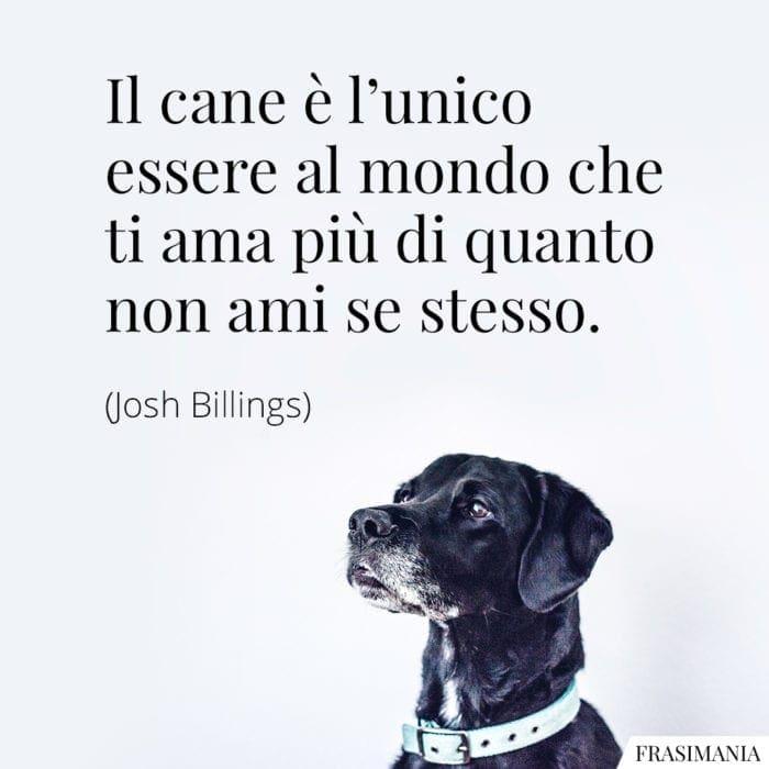 Frasi cane ama Billings