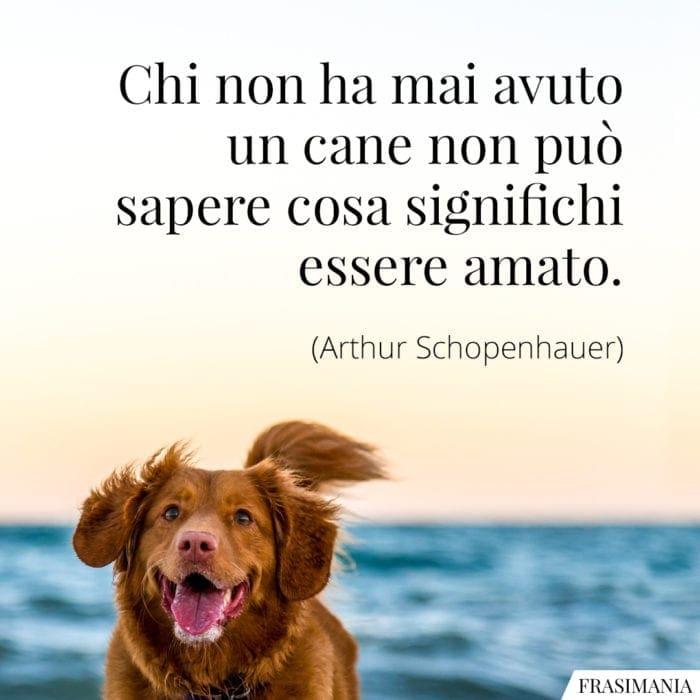 Frasi cane amato Schopenhauer