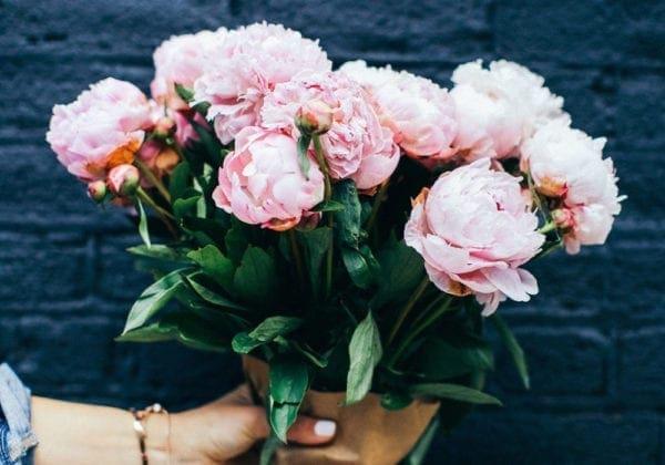 Frasi sui Fiori in inglese: le 25 più belle (con traduzione)