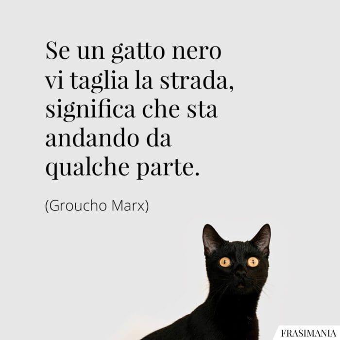 Frasi gatto nero strada Marx