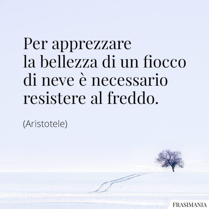 Frasi neve freddo Aristotele