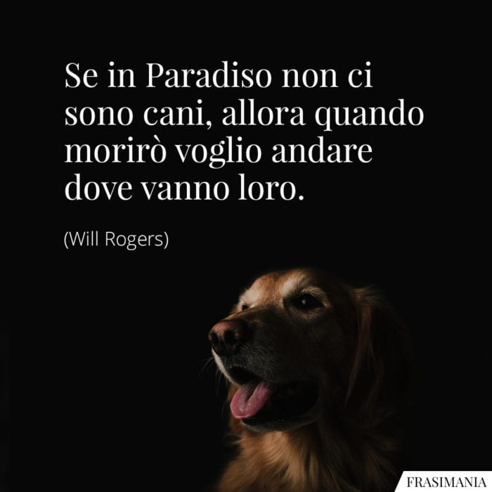 Le 35 Piu Belle Frasi Sui Cani In Inglese E Italiano