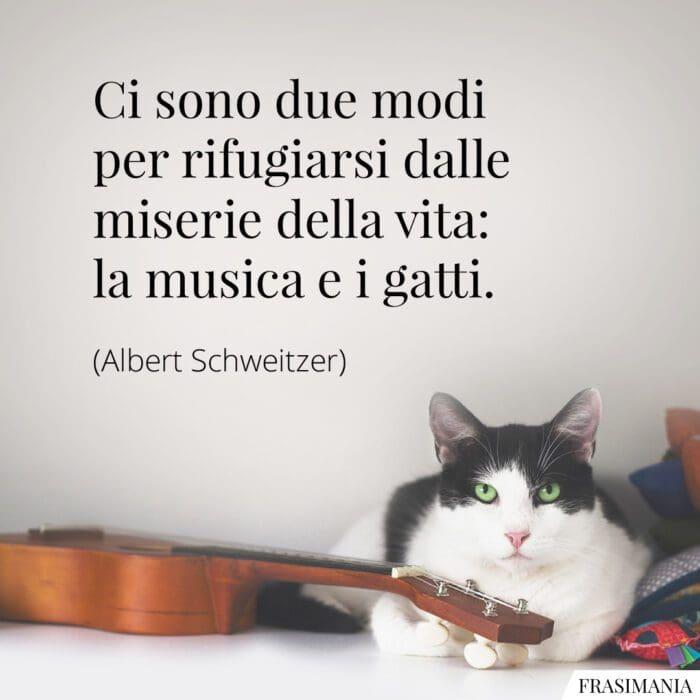 Frasi vita musica gatti Schweitzer