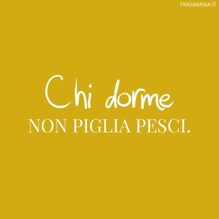 Proverbi Italiani Dorme