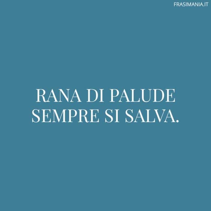 Proverbi Italiani Rana