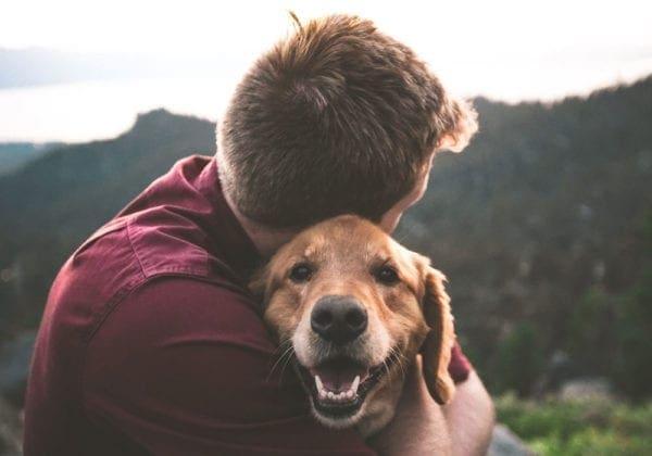 Frasi sugli Abbracci: le 35 più dolci e romantiche