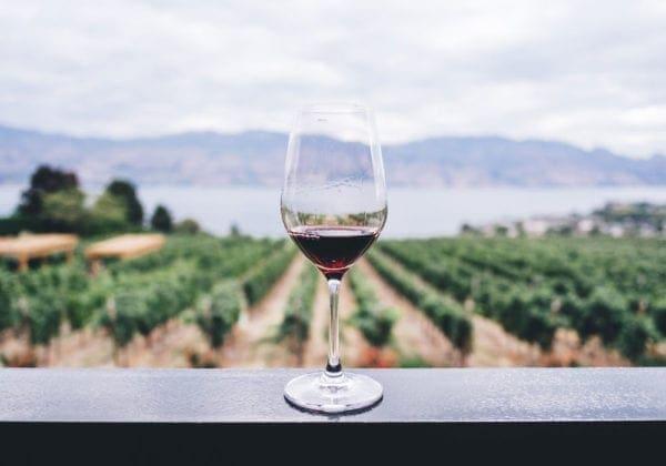 Frasi sul Vino e sul Bere: le 25 più belle (in inglese e italiano)