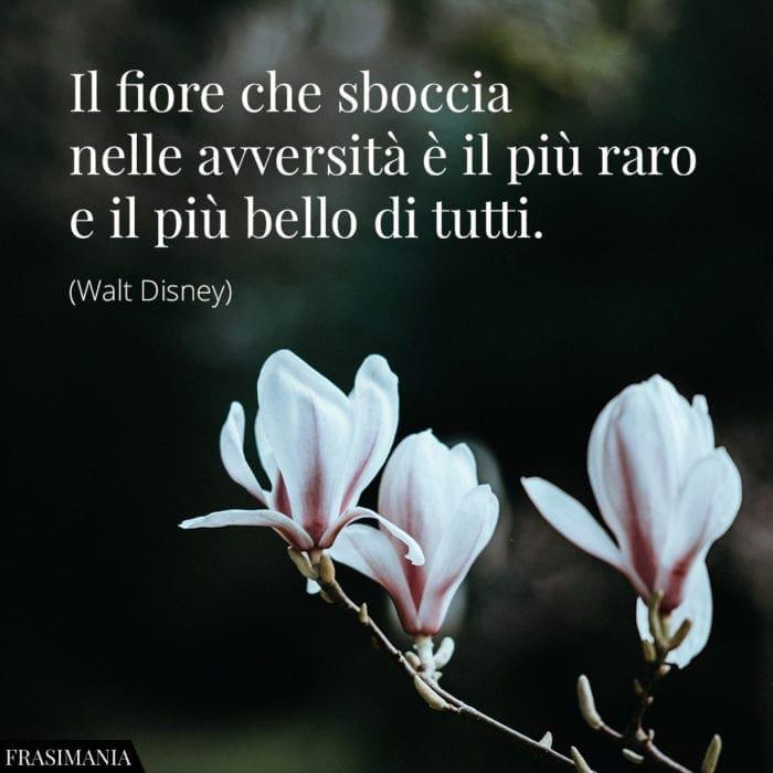 Frasi Sui Fiori Le 25 Piu Belle In Inglese E Italiano