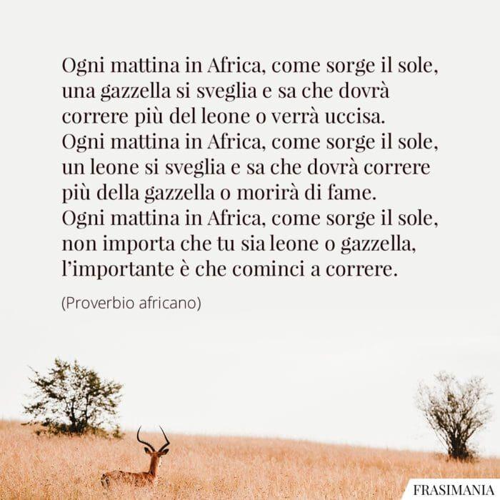 Frasi leone gazzella Africa