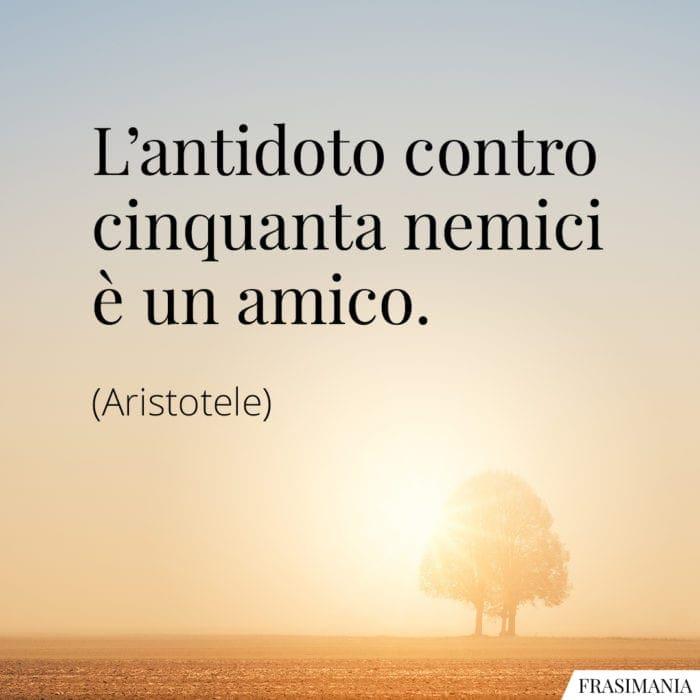 Frasi antidoto nemici amico Aristotele