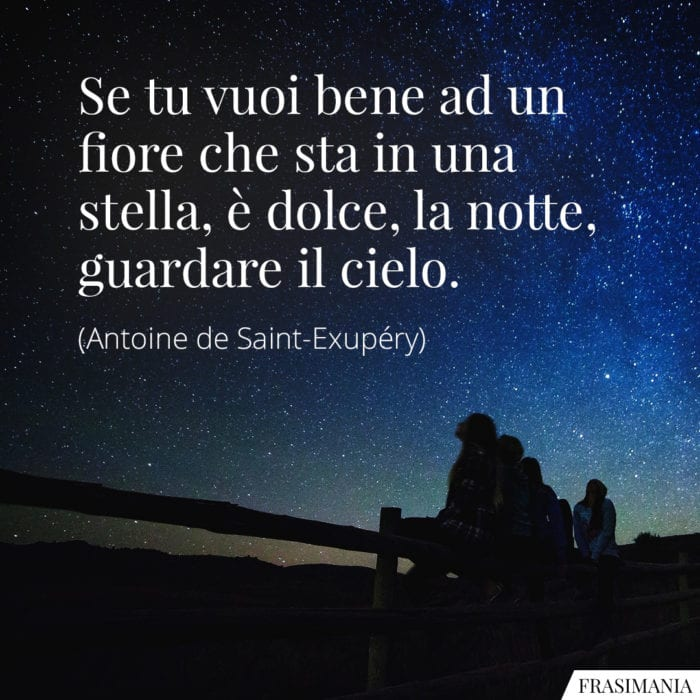 Frasi fiore stella dolce notte