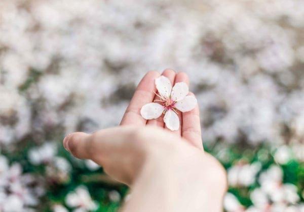50 Pensieri Positivi sulla Vita per iniziare al meglio la giornata