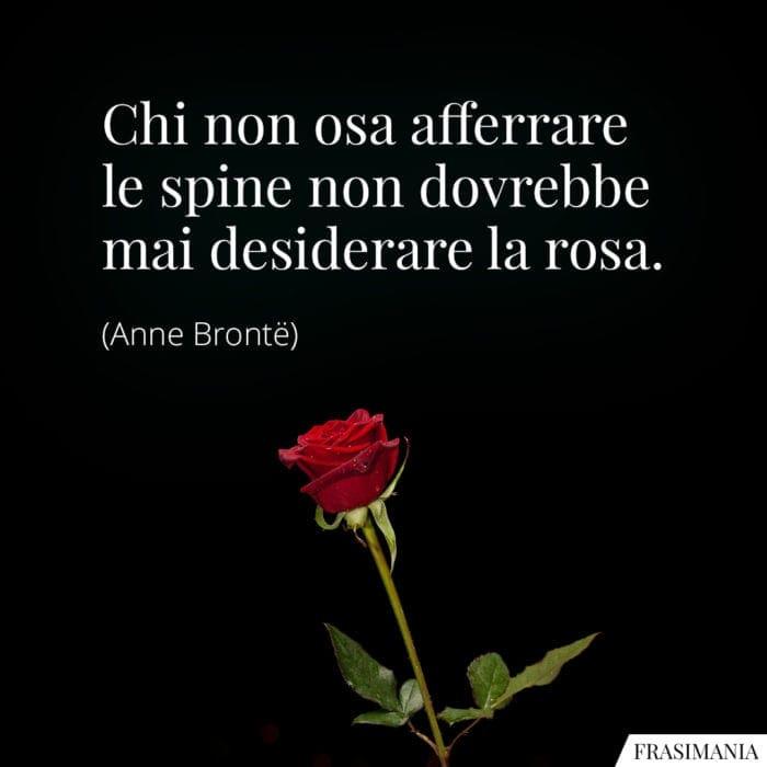 Frasi spine rosa Brontë
