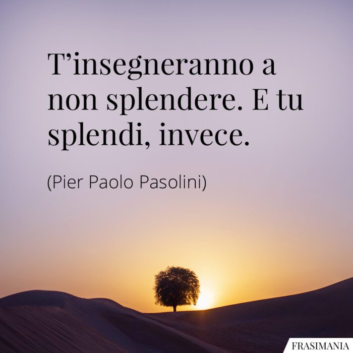 Frasi splendere splendi Pasolini