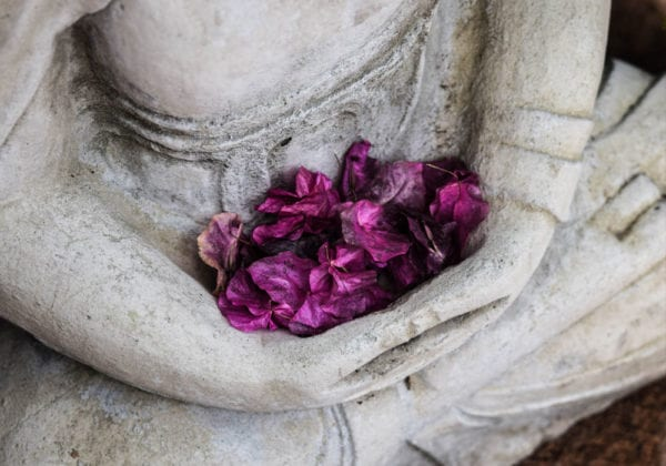 25 frasi Zen sull'Amore che ti faranno riflettere