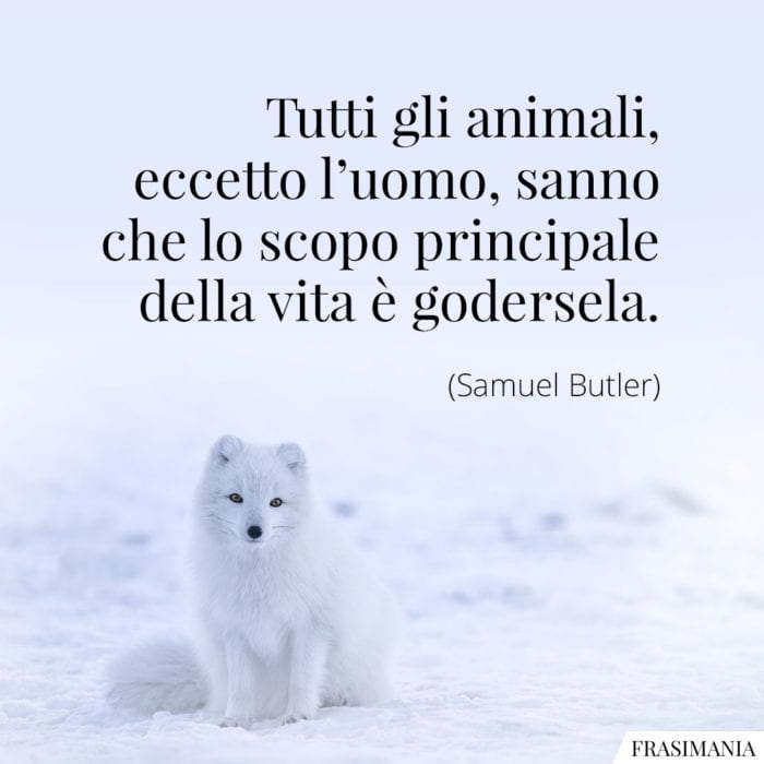 Frasi animali vita godersela Butler