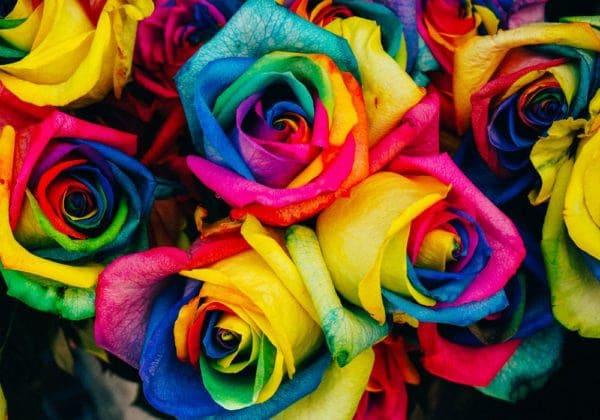 Frasi sui Colori: le 25 più belle (in inglese e italiano)
