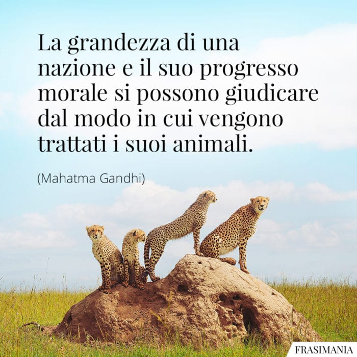 Frasi nazione progresso animali Gandhi