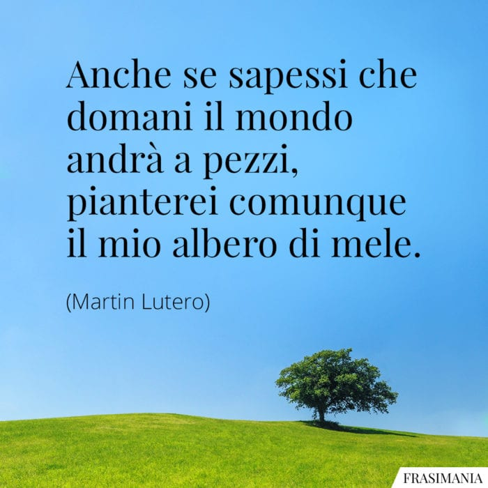 Frasi Sugli Alberi Le 35 Piu Belle In Inglese E Italiano