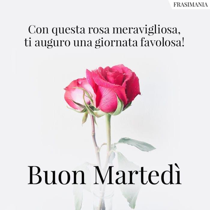 Buon Martedì rosa