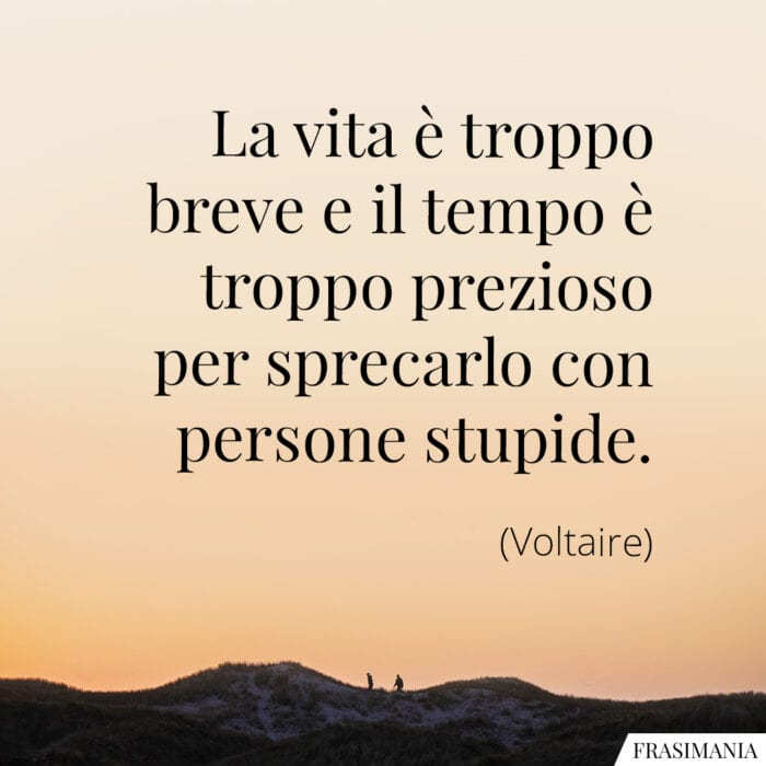 Frasi vita tempo persone stupide Voltaire