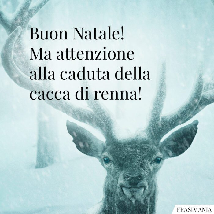 Frasi Natale cacca renna