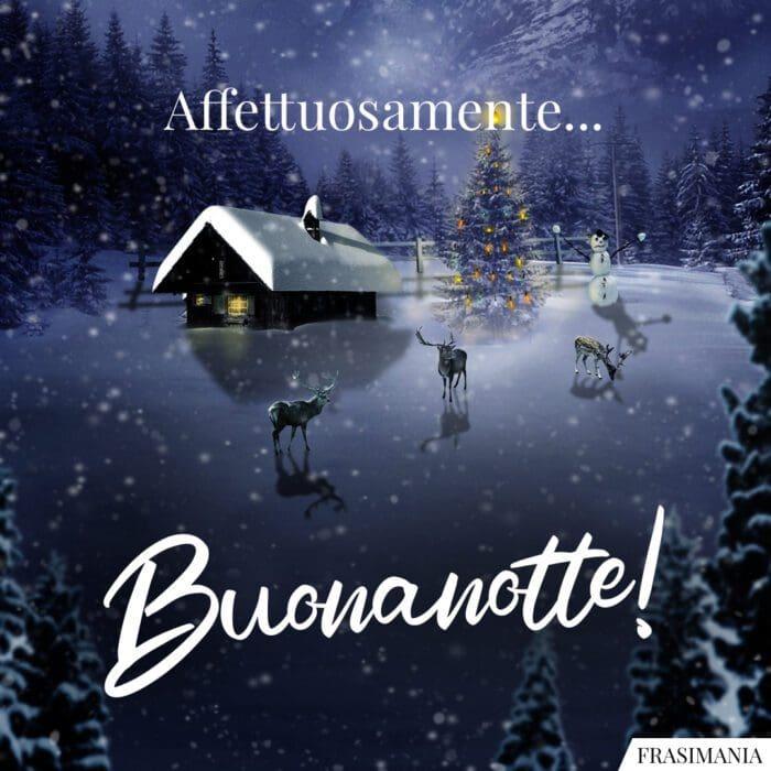 Buonanotte natalizia affettuosamente