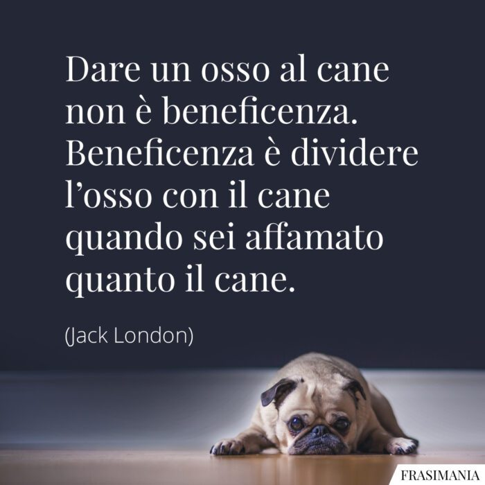 Frasi osso cane beneficienza London