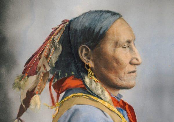 Proverbi degli Indiani d'America